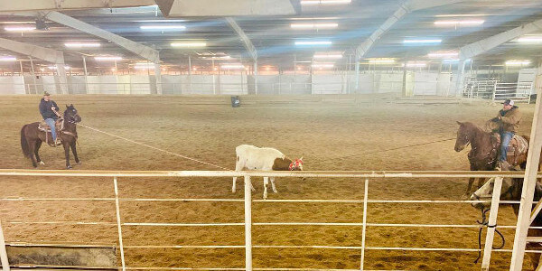 Civil War Horse Arena Calf Roping